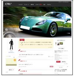 自動車メーカーB社の事例