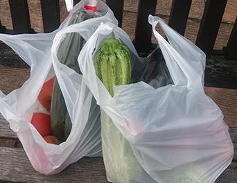 レジ袋有料化に関する意識調査東西比較